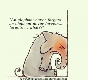 "The phrase ""an elephant never forgets is wrong!"""