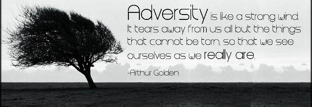 adversity nlp training courses ireland neuro linguistic programming blackbelt mastermind